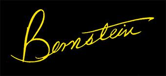 Steve Bernstein Art
